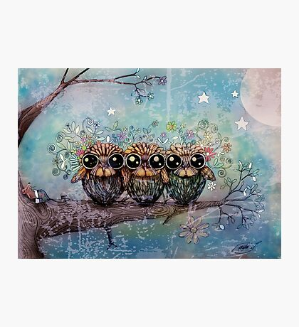 three little night owls Photographic Print