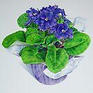 African Violet by joeyartist