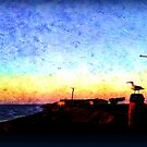 Seagull at the Bay in Oil by EvePenman