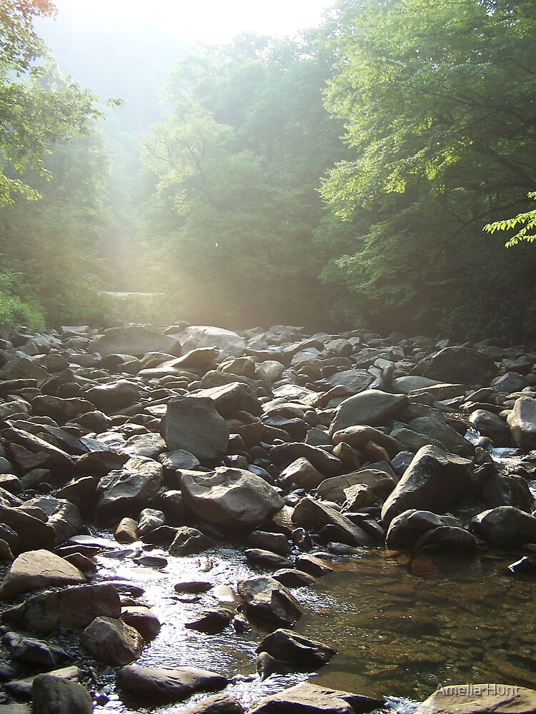 Peaceful Stream by Amelia Hunt
