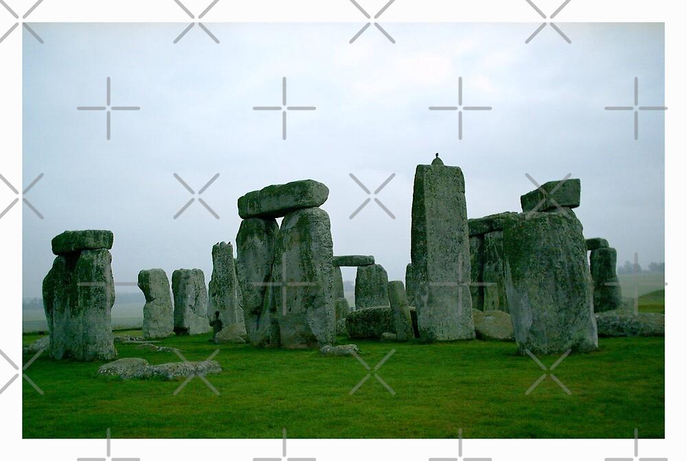 stones in the shadows (11) by Trevor  Herbert