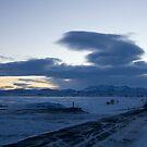 Dawn over Lake Myvatn by Sue Robinson