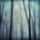abstract trees in fog by Dirk Wuestenhagen