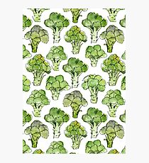 Broccoli - Formal Photographic Print