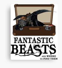 Toothless Dragon The Fantastic Beast Canvas Print