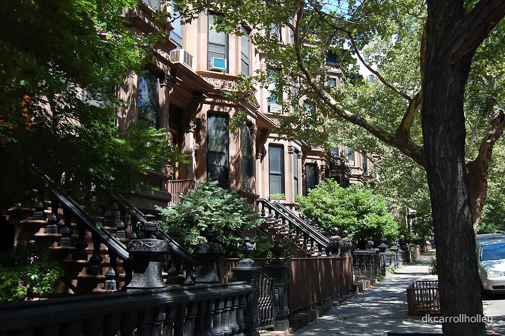 Carroll Street Brownstones by dkcarrollholley