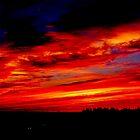 Dramatic Firey Sunset  by Martha Medford