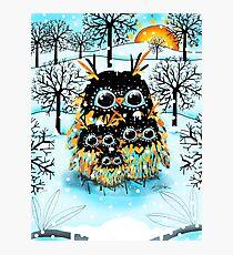 snow owls Photographic Print