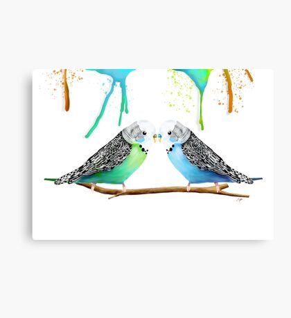 Budgie Love Canvas Print