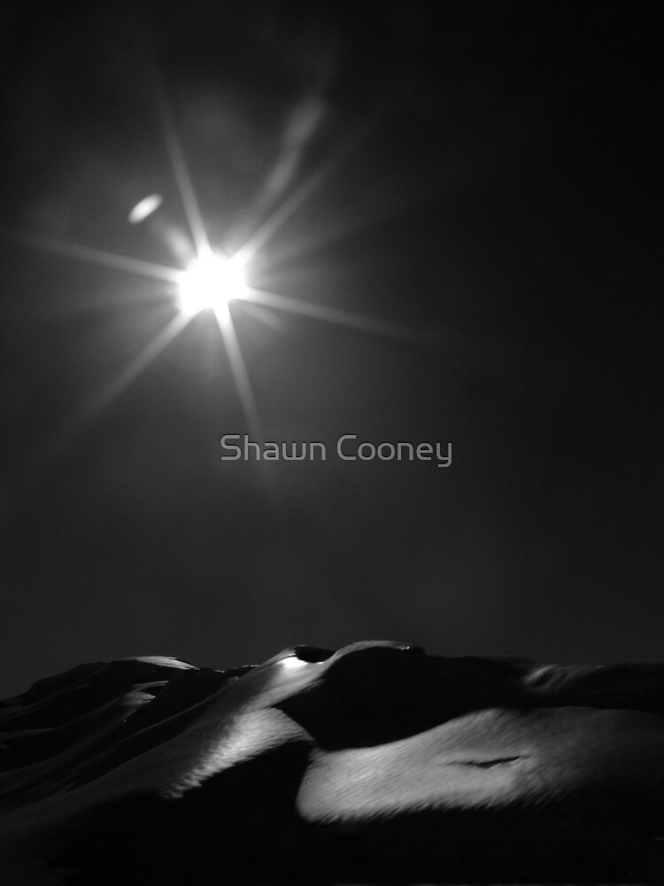 Sensual Mother Earth by Shawn Cooney