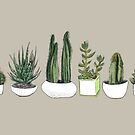 Watercolour Cacti & Succulents - on beige by Vicky Webb