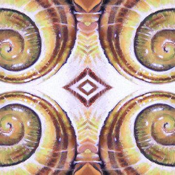 Snail Shell Kaleidoscope by Hopemartinart