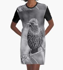 le Best des Etourneaux Black & White 1.01.2015  (n&b)(h) 04 by Olao-Olavia / Okaio Créations Graphic T-Shirt Dress