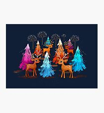 Happy Christmas Trees Photographic Print