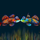 Mandarinfish by © Karin Taylor