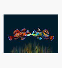 Mandarinfish Photographic Print