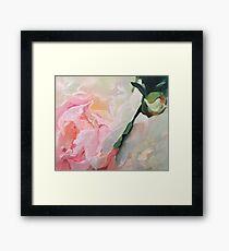Original Oil Painting Light Pink Peony Rose Framed Print
