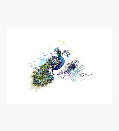 Blue Paisley Peacock Photographic Print