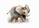 The Baby Elephant Prince by Karin Taylor