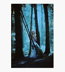 forest lights Photographic Print
