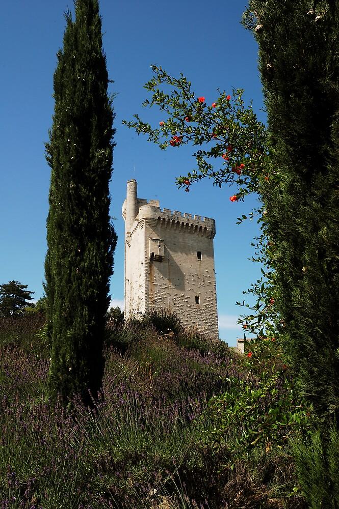 la tour avignon by ragman