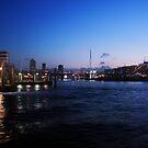Cockle Bay twilight by Sara Lamond