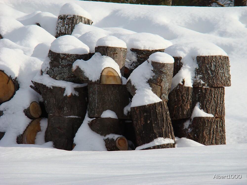 Winter wood by Albert1000