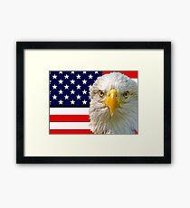 Flag and Eagle  Framed Print