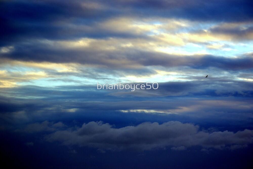 Lonely flight by brianboyce50