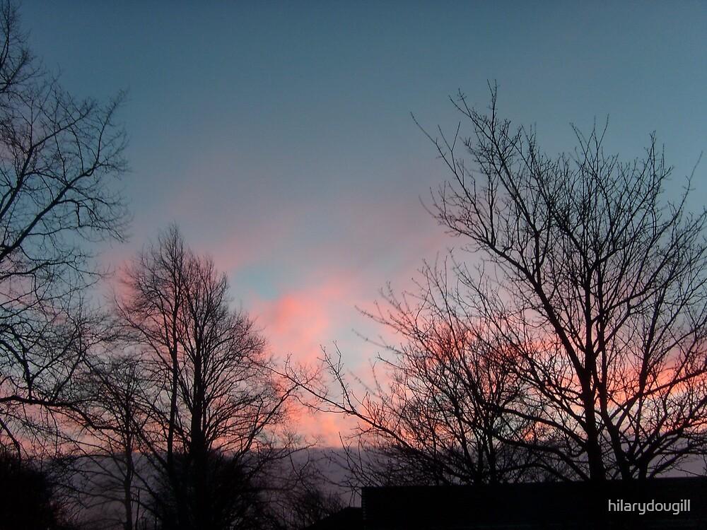 Sky on January 25th by hilarydougill