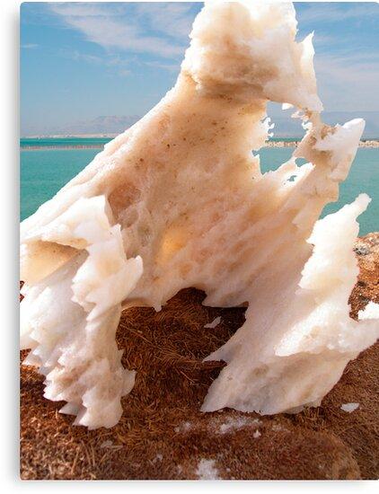 Dead sea salt 3 by Efi Keren