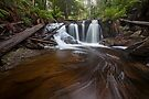 Caesar Falls by Travis Easton