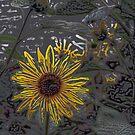 The sunflower - modern art by Christian  Zammit