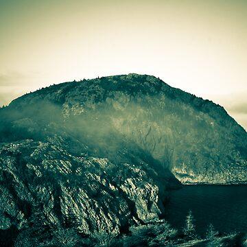 Misty Mountain Top by colintobin