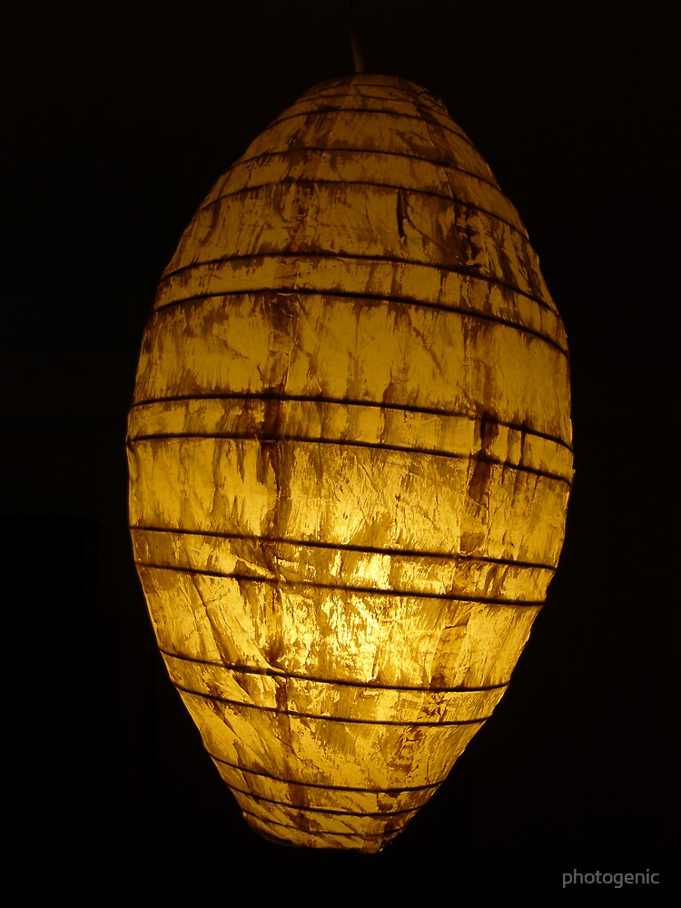 just another lampshade by photogenic