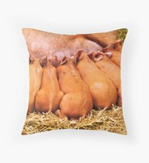 Tamworth Piglets feeding Throw Pillow