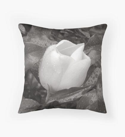 White Rain Throw Pillow