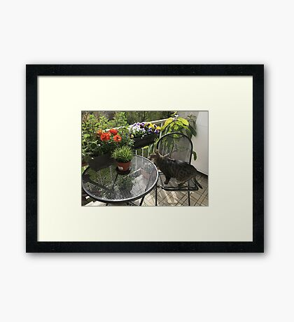 Favorite place Framed Print