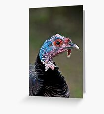 Bronze Turkey Head Greeting Card