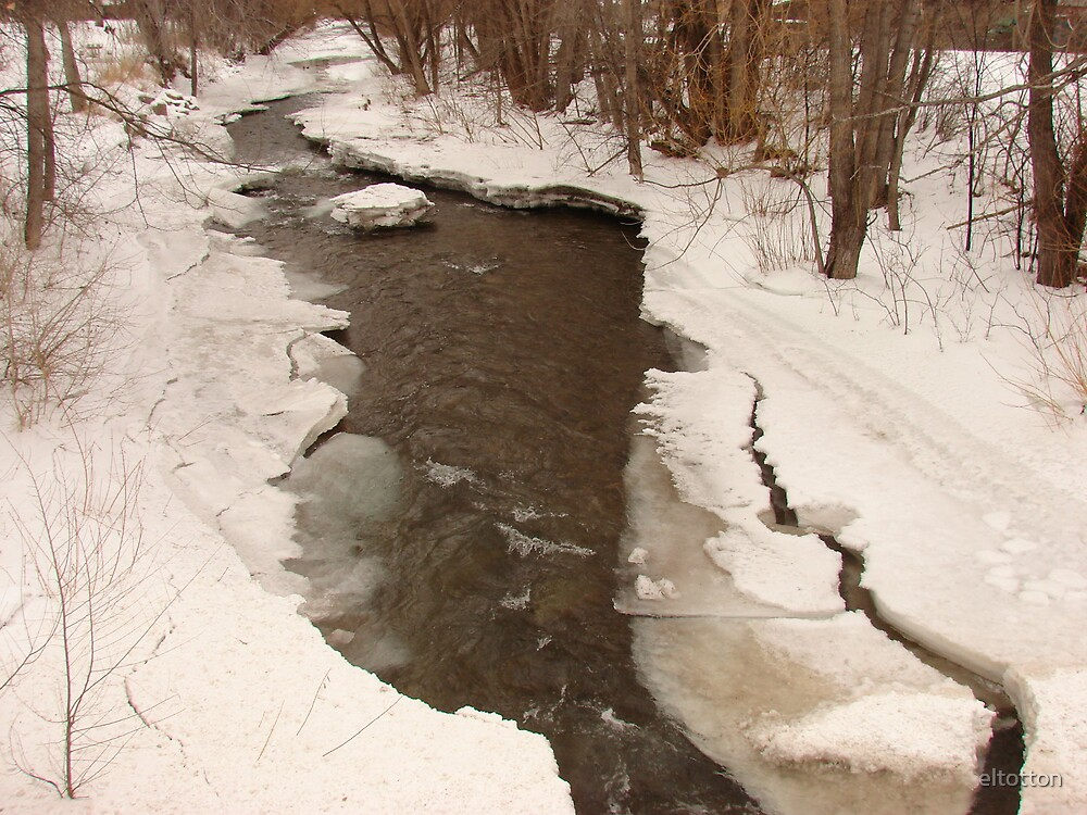 Cold Water Creek by eltotton