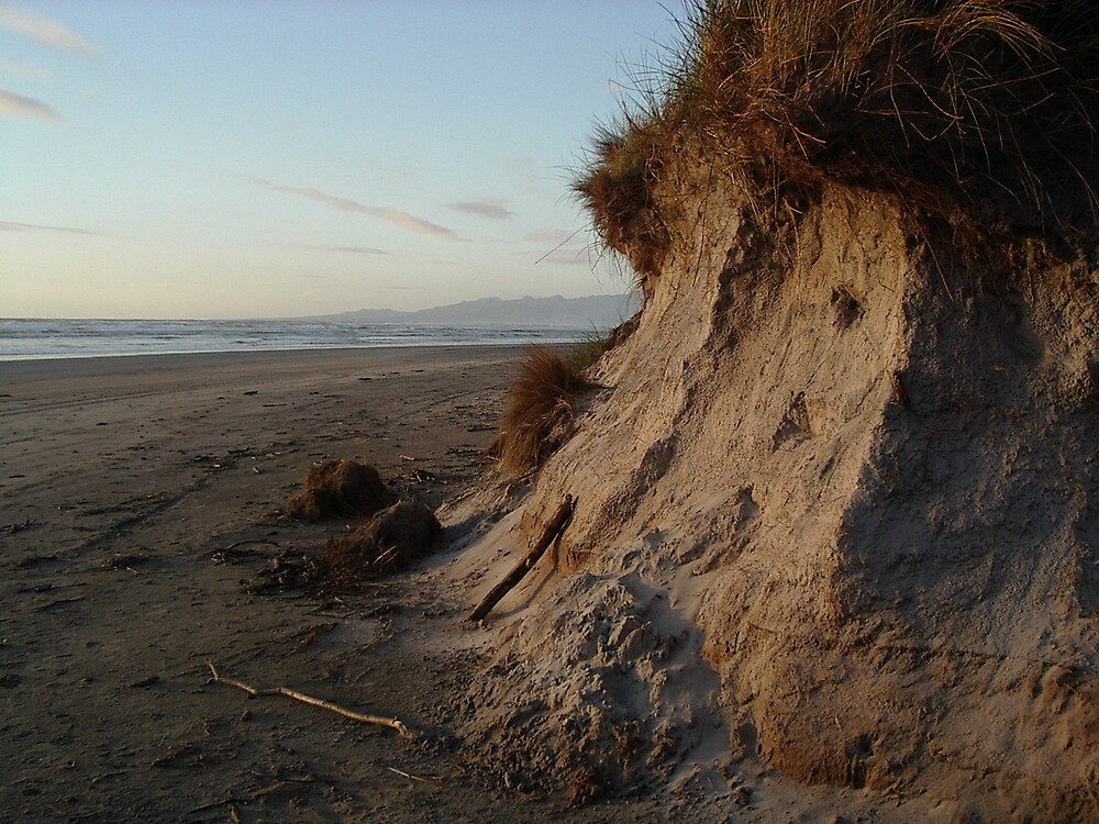 Windswept beach by Paul Alderson