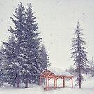 Peaceful Snowy Day by Svetlana Sewell