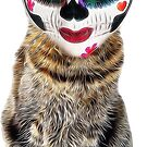 El Gato Mexicano by Paul Webster