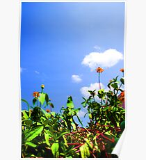 Flowers Against the Sky Poster