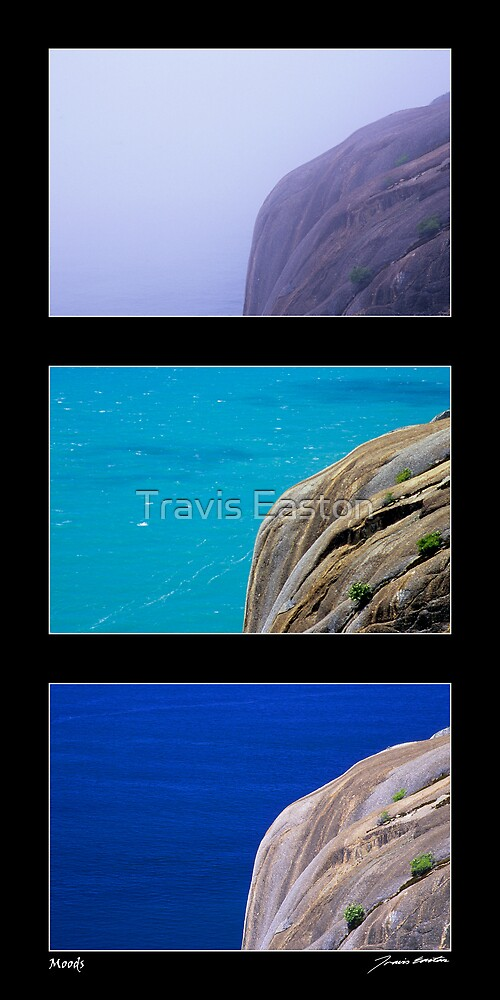 Moods by Travis Easton