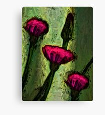 Hot Pink Dandelion Flowers with Golden Green Canvas Print