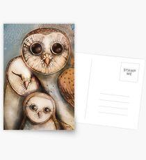 three wise owls Postcards