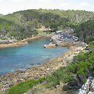 Kianinny Bay, Tathra, NSW Australia by Stephen  Shelley