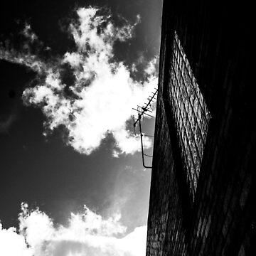 Window by laurenbull16