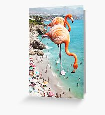 Flamingos on the Beach #redbubble #decor Greeting Card